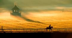 Bourbon County by Bobby Shiflet